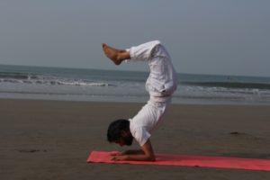 yoga teacher training in yoga