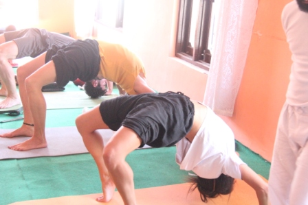 Daily drop in yoga classes
